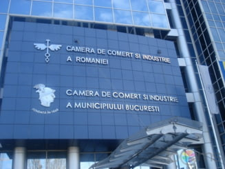 Vosganian ridica in slavi Registrul Comertului: inregistrezi o firma in doar trei zile
