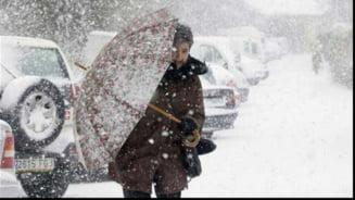 Vreme anormal de calda in continuare - cand vine adevarata iarna, cu ninsori si frig