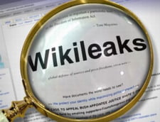 WikiLeaks: Topul oligarhilor romani, in viziunea ambasadei SUA