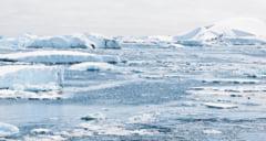 Zapada din Antarctica capata nuante verzi din cauza modificarilor climatice