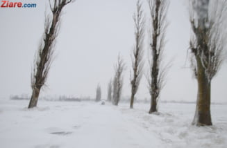 Zapada si viscolul inchid si azi circulatia pe 7 drumuri nationale. Pe A1 e polei