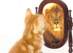 Zece sfaturi simple pentru a-ti ridica stima de sine, una dintre cheile succesului personal