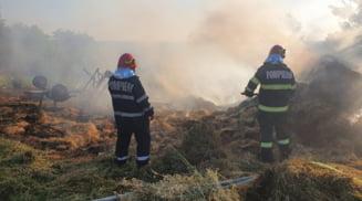 Zece tone de furaje s-au facut scrum in urma unui incendiu produs la Parscoveni