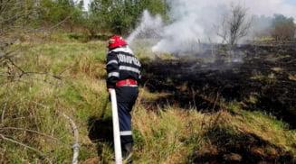 Zeci de hectare de vegetatie uscata s-au facut scrum, in urma unor incendii devastatoare produse in Olt