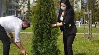 Ziua Pamantului, marcata de autoritatile din Olt. Au plantat arbusti ornamentali si au desfasurat actiuni de ecologizare