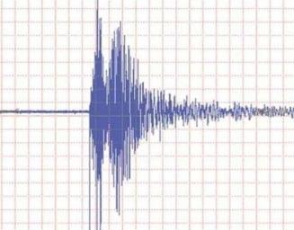 Ziua si cutremurul: Un nou seism s-a produs in Vrancea