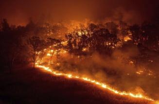 Zona în care au loc cele mai frecvente incendii de pădure. Raed Arafat, despre motivele pentru care nu se intervine cu avioanele de stingere a incendiilor