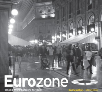 Zona euro se pregateste pentru un 2012 dificil - Vezi cum afecteaza Romania