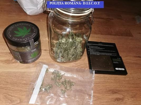 Cannabis la borcan