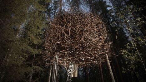 casa copac imagini
