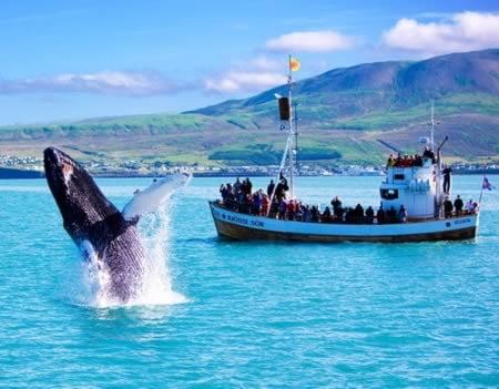 Cea mai curata tara: Islanda