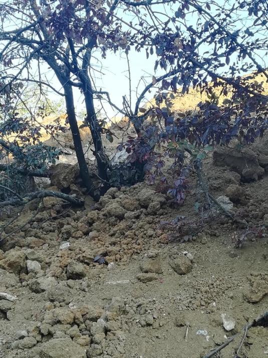 Copac ingropat sub valul de pamant adus de utilajele Primariei Sectorului 3