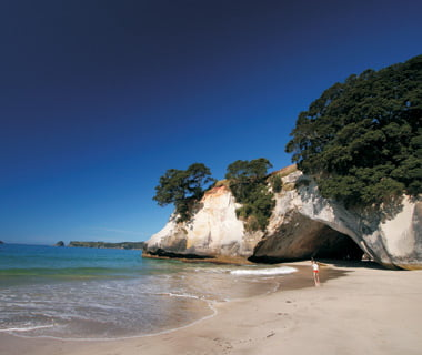 Exploreaza pesterile marine din Noua Zeelanda