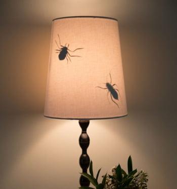 farsa 1 aprilie insecte