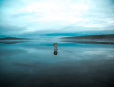 husky lac inghetat Rusia