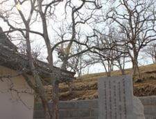 imagini Coreea de Nord
