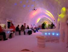 interior bar Balea Lac