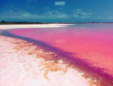 lac roz sare Spania