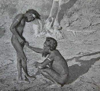 Mardudjara trib ritual taiere penis