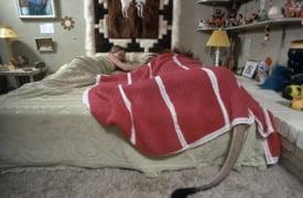 Melanie Griffith leu pat