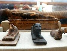 morminte animale Egipt