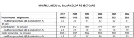 Numar mediu salariati pe sectoare