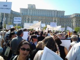 Oamenii au protestat langa Palatul Parlamentului fata de problema maidanezilor