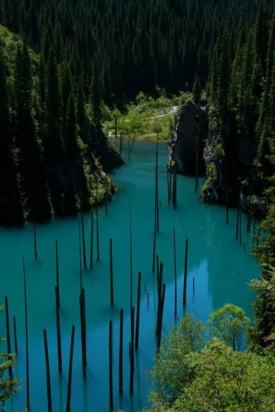 padure scufundata Kazahstan