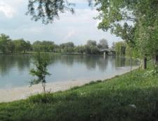 parca Tineretului lac