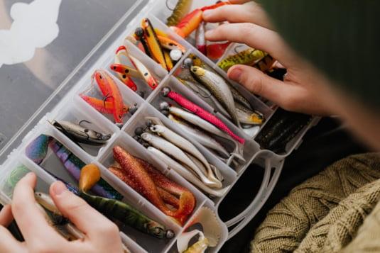 pescuit FOTO: pexels.com