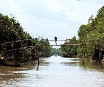 Podurile Monkey Bridges din Vietnam