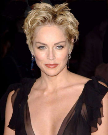 Sharon Stone coma